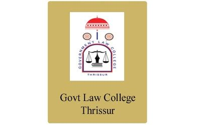 Essay on the rule of law Termite Safe